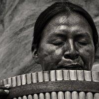 Флейтист индеец :: Nn semonov_nn