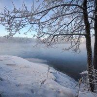 Кружева морозного утра :: Евгений Плетнев