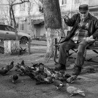 старость и радость :: Татьяна Исаева-Каштанова