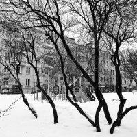 Детская площадка :: Valerii Ivanov