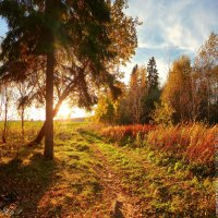 Осенний закат :: Анастасия Белякова