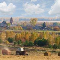 Осень в Некрасово :: Геннадий Ячменев