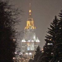 Снежное фото :: Тата Казакова