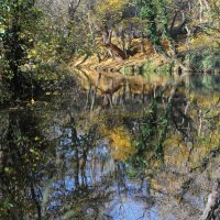 Там лес и дол видений полны... :: надежда корсукова