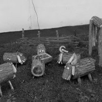 Деревянная отара...с пастухом) :: Андрей Самуйлов