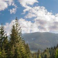 у горах :: Serhii Fedoruk