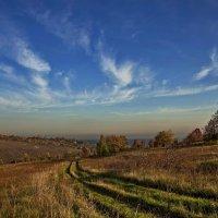 Дорога в осень :: Владимир Макаров