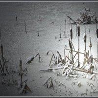 Утро таяло в тумане… Шелестели камыши… :: Olenka