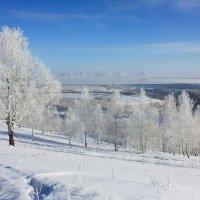 Заснеженные дали. :: Наталья Юрова