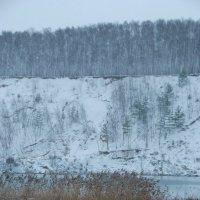 Пейзаж цвета гжели :: Ксения Угарова