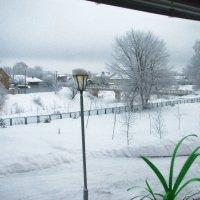 Из окна... :: Юрий
