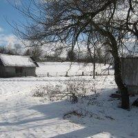 Поздней зимой в марте.... :: Alena Cyargeenka