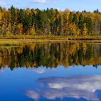 осень :: y.chan Подкопаев