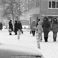 Снегопад :: Риф Сыртланов