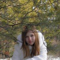 Зима :: Андрей Щукин