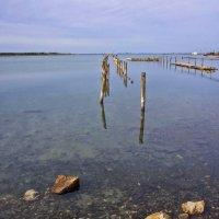 Соленое озеро. :: Svetlana Sneg