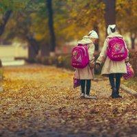 Осень :: Сахаб Шамилов