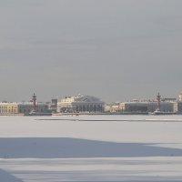 В морозной дымке :: Valerii Ivanov