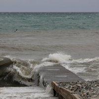 Я пришел на берег синя моря :: Виолетта