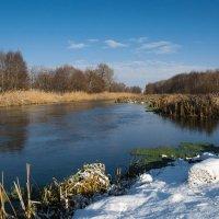 Зимняя речка :: Yuri Silin