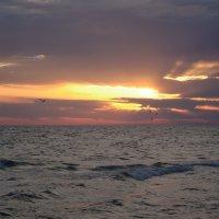 Море Анапа :: Светлана Шарафутдинова