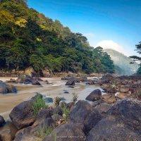 горная река близ г.Канди, Шри-Ланка :: Анатолий Сазонов