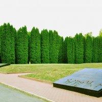 мемориал г.Курск :: Артем Тимофеев