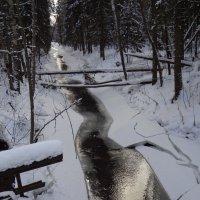Малая речка :: sv.kaschuk