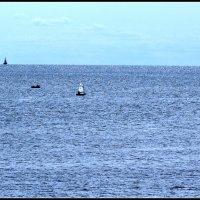 Мечты о морях. Ильмень-озеро :: Евгений Никифоров