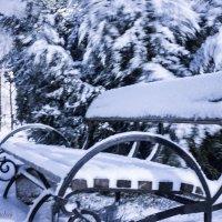 Первый снег :: Igor Topchiev