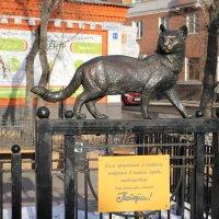 Всем иркутянам и кошкам живущим в Иркутске :: Сергей Михайлов