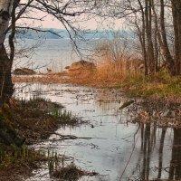 Весенний разлив :: Марина Шубина