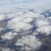 Под крылом самолета проплывают облака... :: Ольга Иргит