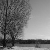 Зима :: Сашенька)