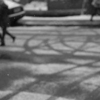 календарь зимы 4/12 :: Андрей Яшин