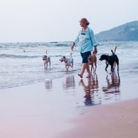 baga beach :: Юрий ефимов