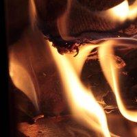 огненный дух моего камина :: Любовь Анищенко