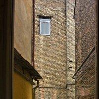 Вид на садик из окна :: Виктор (victor-afinsky)