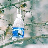 Птичье молоко :: Евгений Ш