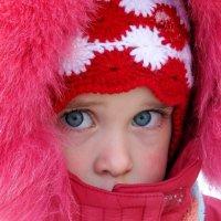 Красная шапочка. :: Надежда Ивашкина