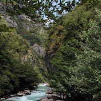 Горная река :: Никита Коробейников