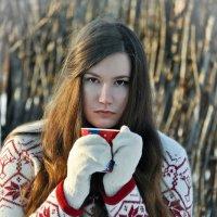 зима :: Светлана Абатурова