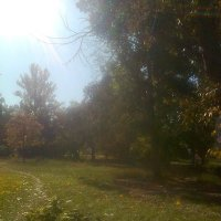 осень :: Юлия Закопайло