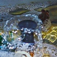 Илистый прыгун у фонтана :: Shmual Hava Retro