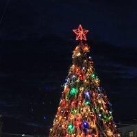 Новогоднее настроение) :: Надежда Молчанова