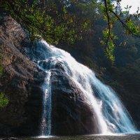 водопад Дудхсагар :: Юрий ефимов