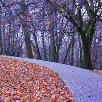 дорога в осень :: Светлана З