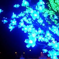 Зимние цветы :: Akira Shiro