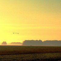 На восходе солнца :: Геннадий Ячменев