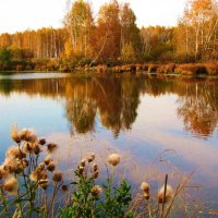 Осень :: Геннадий Ячменев